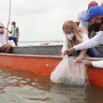 Vuelve el 'Plan Pescado': 3.000 pescadores del Atlántico se verán beneficiados