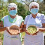 1.500 sancochos se vendieron durante el Festival del Guandú de Sibarco